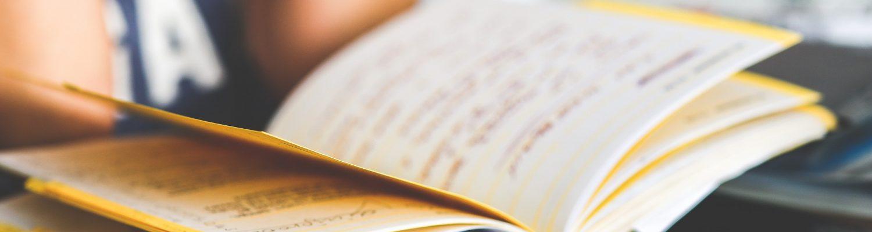 what should an employee handbook consist of
